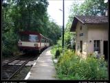 Vlak na zastávce v Holyni