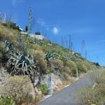 Cestou z hory Lycabettus - Atény