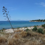 Pláž na ostrově Aegina